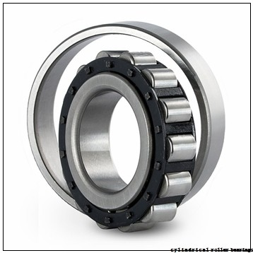 25 mm x 62 mm x 17 mm  FAG NJ305-E-TVP2 Cylindrical Roller Bearings