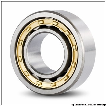 FAG NJ2210-E-M1-C3 Cylindrical Roller Bearings