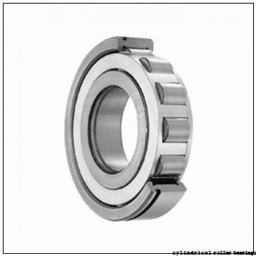 FAG NUP317-E-M1-C3 Cylindrical Roller Bearings