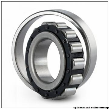 FAG N205-E-M1 Cylindrical Roller Bearings