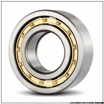 FAG NJ2220-E-M1-C3 Cylindrical Roller Bearings