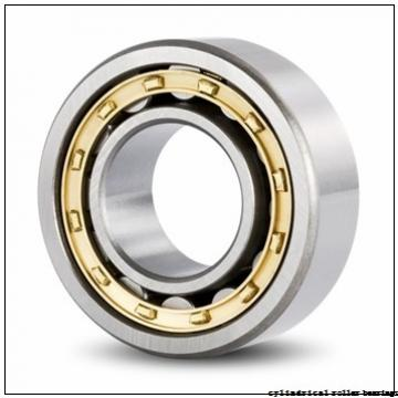 190 mm x 340 mm x 55 mm  FAG NU238-E-M1 Cylindrical Roller Bearings