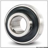 INA GRAE25-NPP-B Ball Insert Bearings