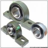 1.0000 in x 3.68 to 4-1/2 in x 1.34 in  Dodge P2BSCEZ100SH Pillow Block Ball Bearing Units