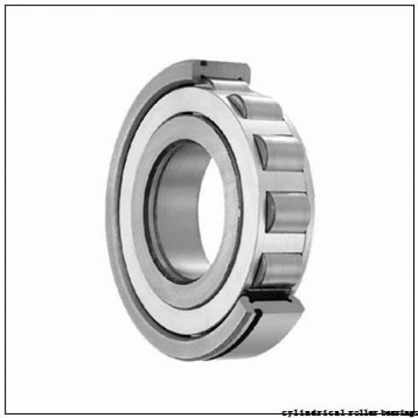 17 mm x 40 mm x 16 mm  FAG NUP2203-E-TVP2 Cylindrical Roller Bearings #3 image