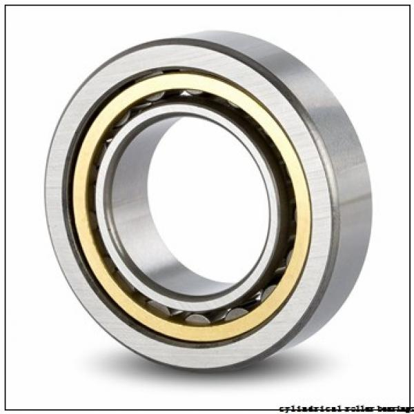 190 mm x 340 mm x 55 mm  FAG NU238-E-M1 Cylindrical Roller Bearings #1 image