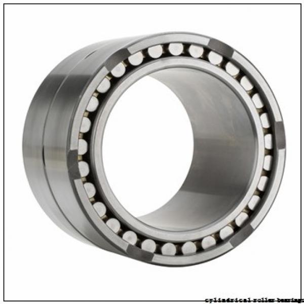 FAG NUP311-E-M1 Cylindrical Roller Bearings #2 image