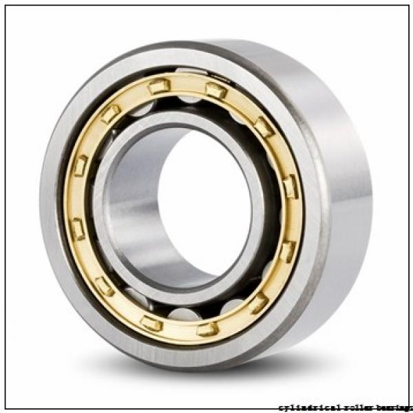17 mm x 40 mm x 16 mm  FAG NUP2203-E-TVP2 Cylindrical Roller Bearings #2 image